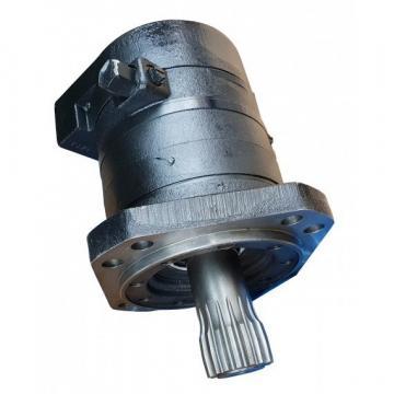 Massey-Ferguson 71412497 Reman Hydraulic Final Drive Motor