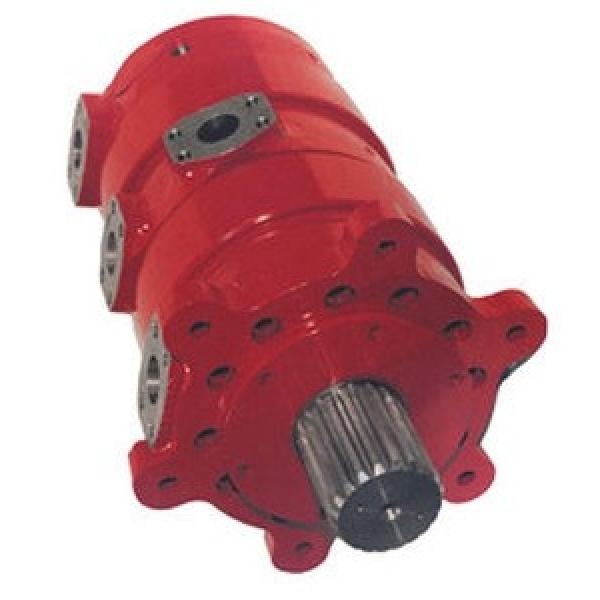 Case 87600262R Hydraulic Final Drive Motor #1 image