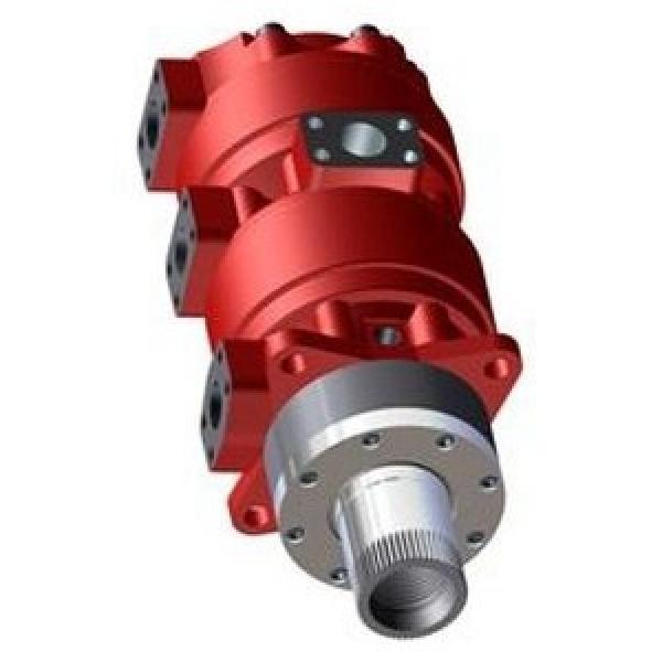 Case 87035341R Reman Hydraulic Final Drive Motor #1 image